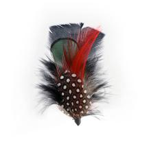 Hat Feather